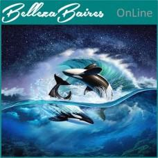Curso de Reiki Trilogía Delfín Nivel 1 y Maestría
