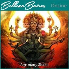 Curso de Sintonizacion Agrimony Shakti Nivel 1 y 2