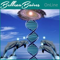 Curso de Sistema Delfinico de Sanación y Equilibrio.