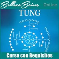 Curso de Master en Auriculoterapia TUNG - CON REQUISITOS